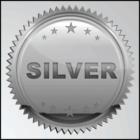 Bone Pile Windows - Silver Partner Program